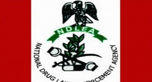 NDLEA Re-strategises On War Against Drugs