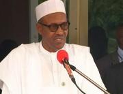 Muhammadu Buhari, Niger Delta,