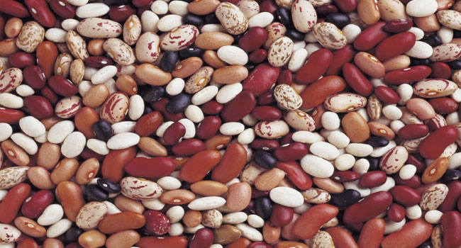 Reps Investigate Nigeria's Dried Beans Export Ban