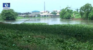 Baby by river bank in osun