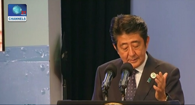 Japan Pledges $30bn To Africa