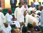 House-of-Representatives-in-Rowdy-session