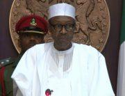 Muhammadu Buhari, Chibok girl