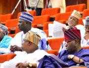 senate-in-nigeria