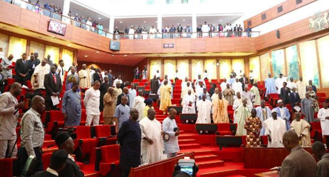 senate-in-nigeria-chamber