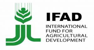 Corruption, Poor Leadership Responsible For Africa's Poverty- IFAD