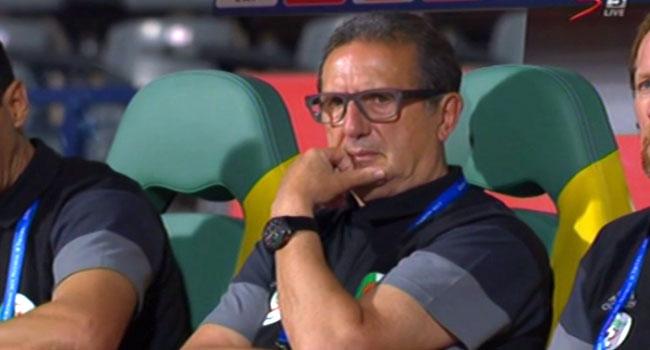 Leekens Resigns As Algeria's National Football Team Coach