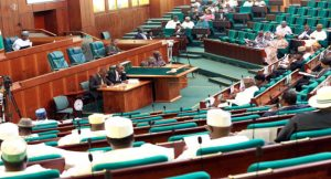 Reps Reject Proposed Amendment To Remove State Governors