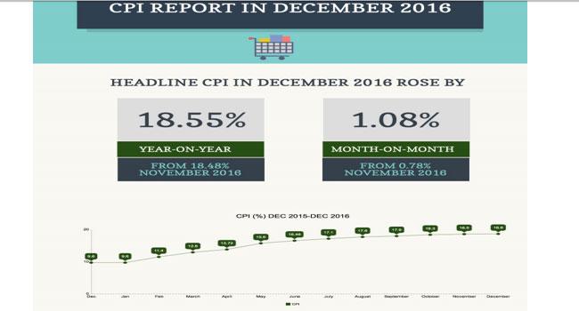 Nigeria's Economy: Inflation Hits 18.55%