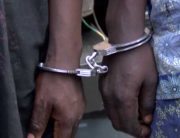 Two More Suspects Arrested Over Tulip School Kidnap