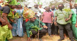 ben-ayade-tree-planting
