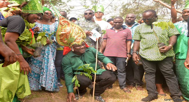 ‎Calabar Green Carnival: Cross River To Plant 1.5mln Trees Every December
