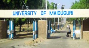 University Of Maiduguri Explosion: Management Postpones Examination