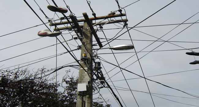 Nasarawa Residents Raise Alarm Over Termite Infested Electric Pole