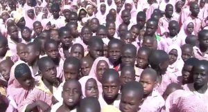 VSF To Assist 12,000 Pupils In Adamawa State