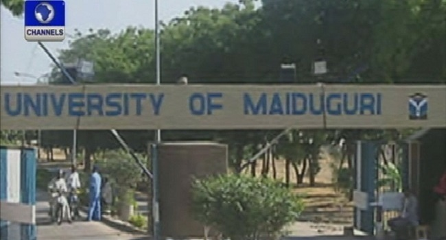 Another Suicide Bomber Attempts To Attack University Of Maiduguri