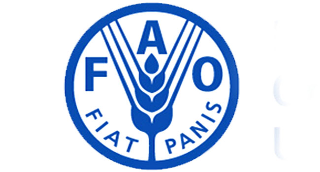 FAO Tracks Climate Smart Agricultural Practices In Northeast Nigeria