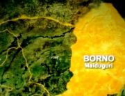 Boko Haram Ambushes Oil Workers, Abducts Academics In Borno