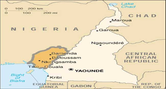 Cameroon kidnap: Army searches for 79 pupils seized in Bamenda