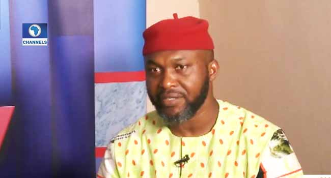 INEC Has Done A Major Disservice To This Country – Chidoka
