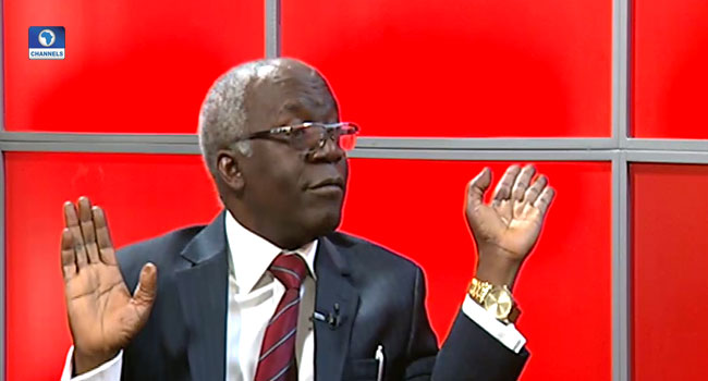 Allow The Courts To Impose Travel Ban On Suspected Looters – Femi Falana
