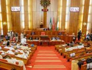 Senate Confirms INEC REC, ICRC DG