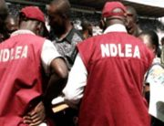 NDLEA Intercepts Drugs Meant For Boko Haram In Adamawa