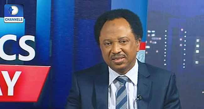 Kaduna Has A Military Administrator Not A Governor – Shehu Sani