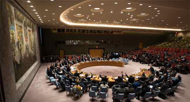 UN Security Council To Hold Meeting Over Mali Crisis On Wednesday
