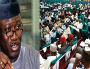 Fayemi Reacts To Vote Of No Confidence By Reps