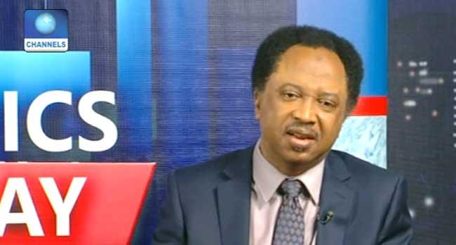 Tenure Extension: Buhari Has Saved APC From Disaster – Shehu Sani