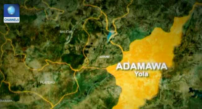 12 Villagers Feared Killed In Adamawa Ambush