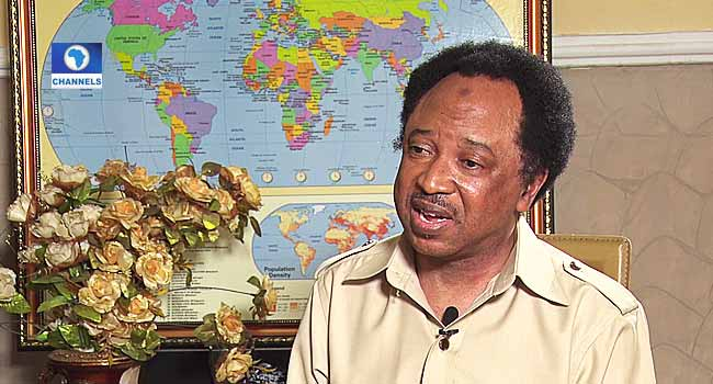 Killings: Political Power, More Important To Governing Elites Than Peoples' Lives – Shehu Sani