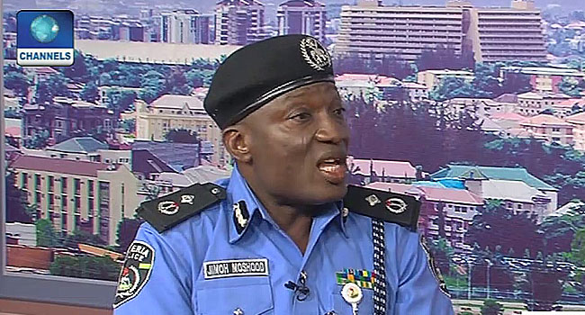 Ekiti Poll: Nigeria Police Not In Support Of Any Political Party – Force PRO