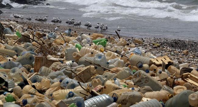 EU Countries Back Single-Use Plastics Ban