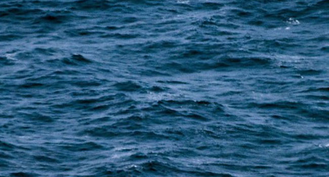 Teen Rescued After Seven Weeks Adrift At sea