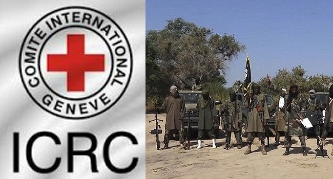 Boko Haram: Red Cross Begs Nigerian Govt To Secure Release Of Abducted Health Workers