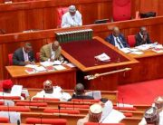 Senate Passes Bill Recognising June 12 As Democracy Day