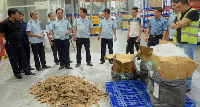 Vietnam Recovers Ivory, Pangolin Haul In Unclaimed Baggage Imported From Nigeria