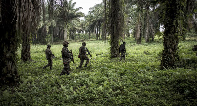 Congo Army launches 'Large-Scale' Operation Against Armed Militias