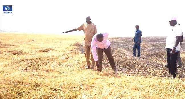 Suspected Herdsmen Burn Ortom's Rice Farm In Benue