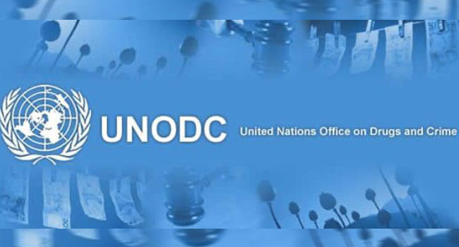 Women In Africa Stand Greater Risk Of Gender-Based Violence – UNODC