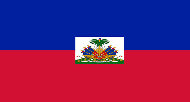 Haiti To Vote On New Constitution In 2021 – Council