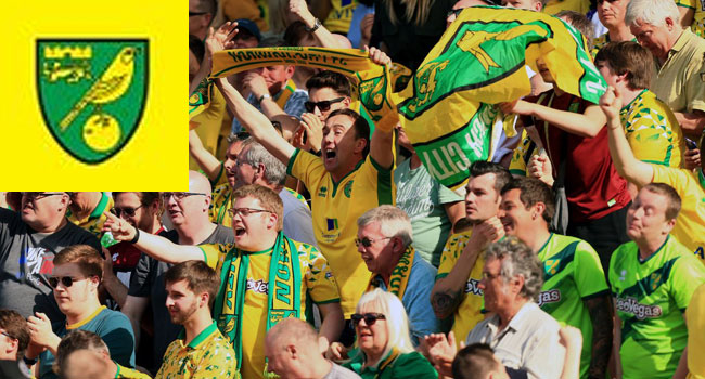 Norwich Promoted To Premier League After Three-Year Absence