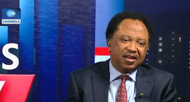 9th Assembly: I Don't Think APC Has Learnt Its Mistake From 2015, Says Sani