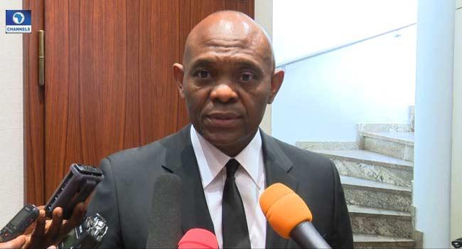 'Let's Rally Round The President', Elumelu Urges Nigerians