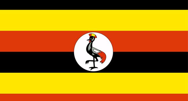 32 Killed In Uganda Road Accident