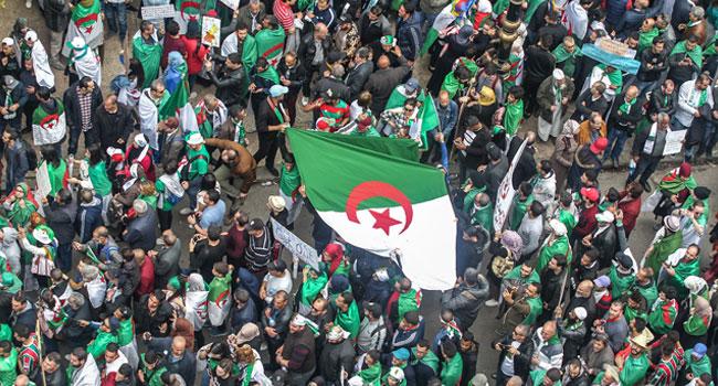 Algerians In Diaspora Celebrate Bouteflika's Resignation With Movement