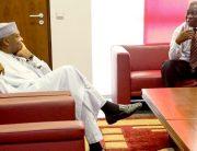 'A Great Friend;' Saraki, PDP, Others Congratulate Ekweremadu At 57