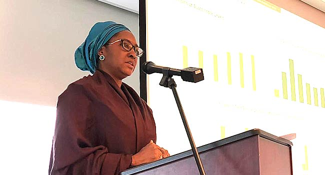 Taxpayers In Nigeria Increased By 23 Million Within Three Years – Finance Minister